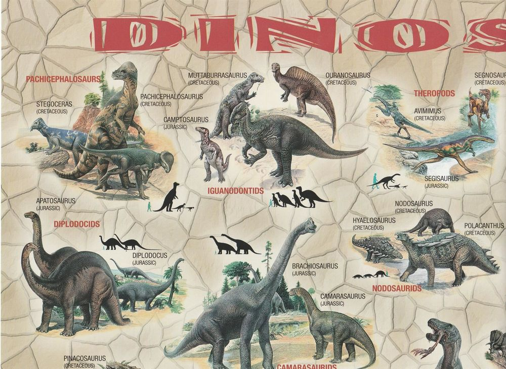 50 Poster Dinosaurier