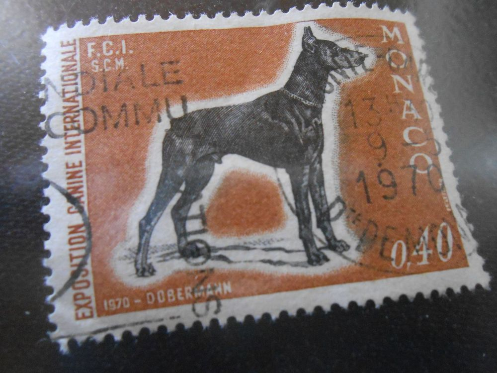 "Briefmarke "" Dobermann ""  - Marocco"