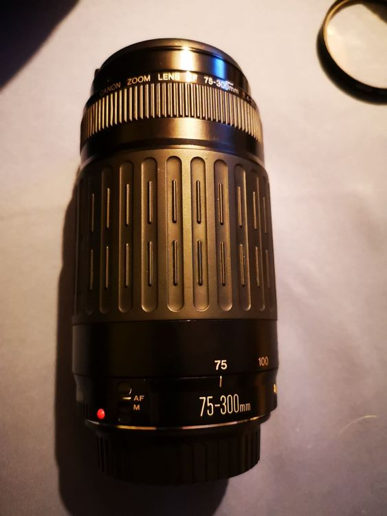 Canon Zoom Lens EF 70-300mm 1:4-5.6