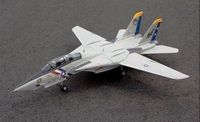 F-14 Tomcat 80mm EDF Spw 1550mm Freewing