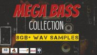 Bass Collection 8GB+ Samples 7000+Sounds
