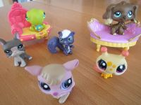 6 little pet shop Figuren + 2 Möbel