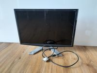 ACER p233w Monitor