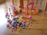 riesiges Polly Pocket  Set
