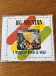 Big Mountain: I Would Find A Way
