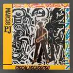 P.J. MARCUS / CICCALACCACOCCO