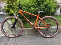 Cotic All-Mountainbike / Dirt-Downhil