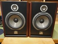 Focal - Solo 6 Be red burr ash