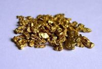 3 GOLD  NUGGETS - Bering Sea