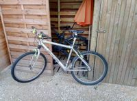 Cannondale F 1000