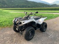 Yamaha Grizzly 700 4x4 Edition