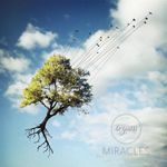 Orymus – Miracles, D13 (Schweizer-Band)