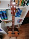 Höfner Acoustic Bass with Pickup