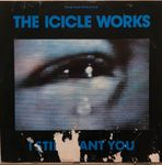 THE ICICLE WORKS - I STILL WANT YOU - MA