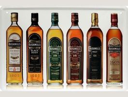 Blechschild-BUSHMILLS-IRISH WHISKY-BOTTL