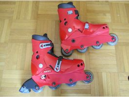 Rollers pointure 36 - 40