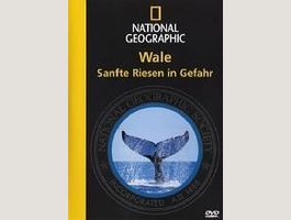National Geographic: Wale - Sanfte Riese
