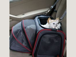Sac voyage extensible pour chat Carrier