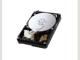 Seagate DB35 Series ST3160215ACE ...