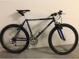 Mountain Bike Ritchey P 22 Team
