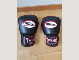 Boxhandschuhe Twins Special