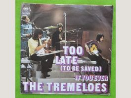 The Tremeloes – Too Late (To Be Saved)