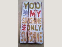 "Schild ""You are my only sunshin"" 60x30"