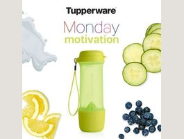 BOUTEILLE INFUSION TUPPERWARE