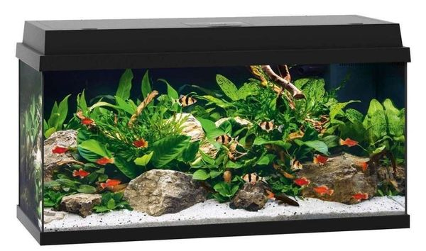 juwel primo 110 led aquarium set schwarz in winterthur kaufen bei. Black Bedroom Furniture Sets. Home Design Ideas